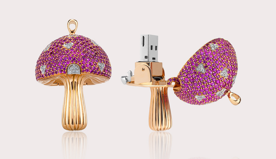 The Most Expensive USB Drive - The Magic Mushrooms