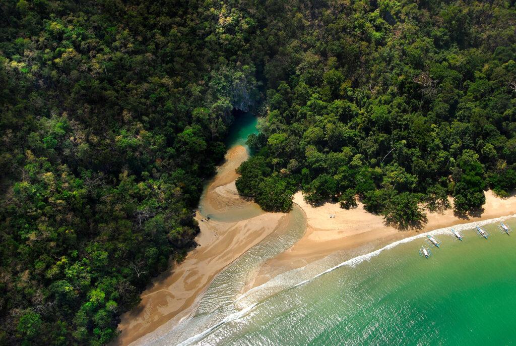 أجمل جزر الفلبين - جزيرة بانوا | صورة جويّة للأشجار