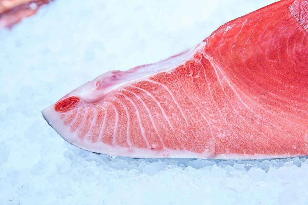 Bluefin Tuna Recipe