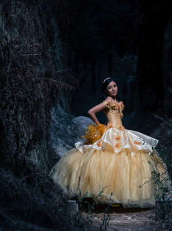 What are Quinceanera Dresses?